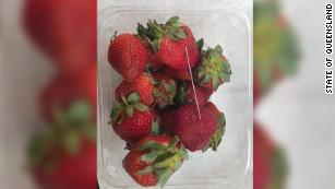 180919135430 queensland contaminated strawberries medium plus 169